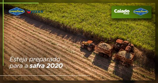 Veja como se preparar para a safra de cana-de-açúcar em 2020